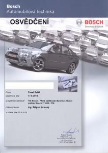 TSI Bosch