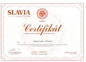 Smluvní servis SLAVIA pojišťovna a.s.
